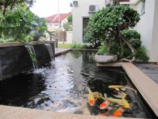 cara membuat kolam ikan koi desain minimalis di depan