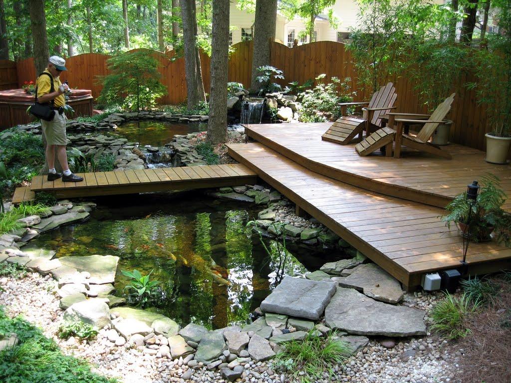 Kolam ikan koi dalam taman yang sejuk dan rimbun dengan pohon besar di atasnya