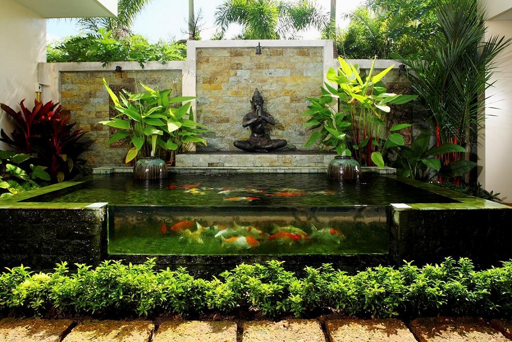 Taman kecil dengan kolam ikan koi yang indah